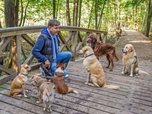 Hundetrainer Stefan Thal - 2