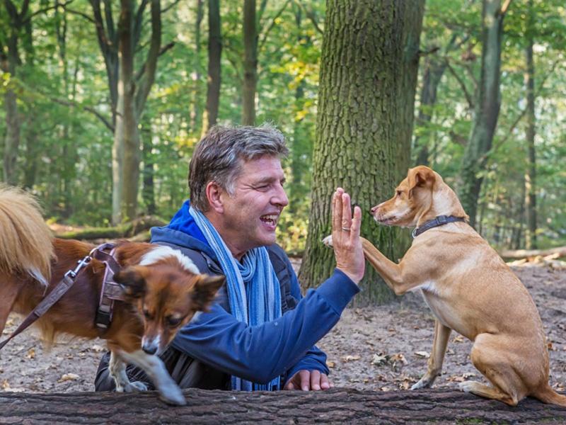Hundetrainer Stefan Thal - Trainingsmethode - 2
