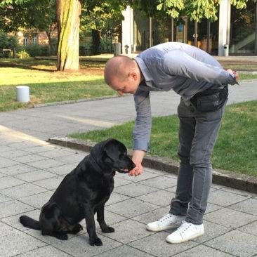"""Hundetrainer Stefan Thal - """"Fritz"""" - 5"""