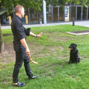"""Hundetrainer Stefan Thal - """"Fritz"""" - 7"""
