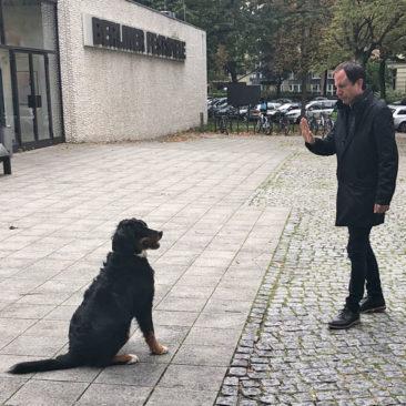 """Hundetrainer Stefan Thal - """"Thilda"""" - 3"""