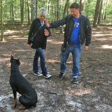 Hundetrainer Stefan Thal - Sven - 5