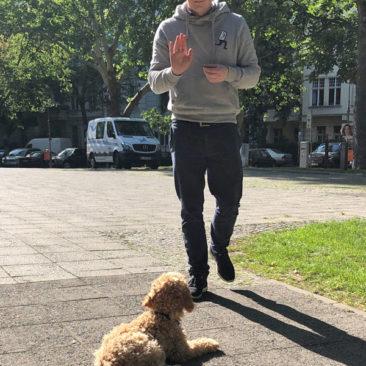 "Hundetrainer Stefan Thal - ""Teddy"" - 1"