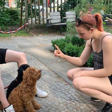 "Hundetrainer Stefan Thal - ""Muffin+Peanut"" - 3"