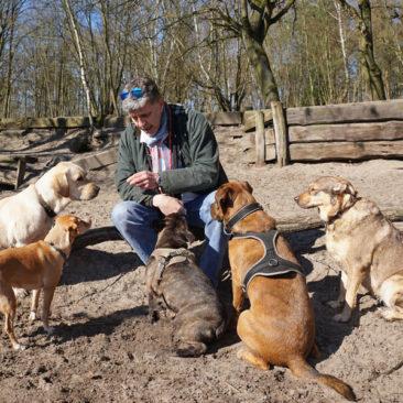 """Hundetrainer Stefan Thal """"dogwalking"""" - 32"""