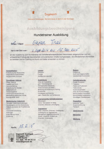 Hundetrainer Stefan Thal - Theorie