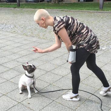"Hundetrainer Stefan Thal - ""Louis"" - 5"