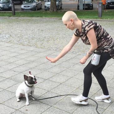 "Hundetrainer Stefan Thal - ""Louis"" - 4"